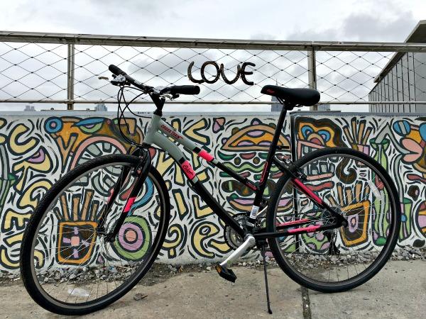 columbia bike 5