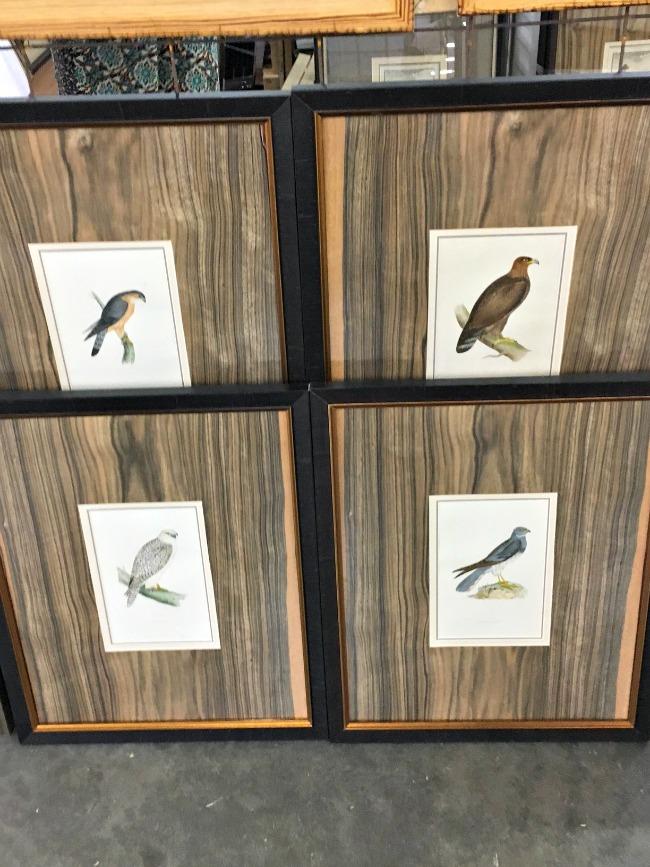 bird-art-scotts