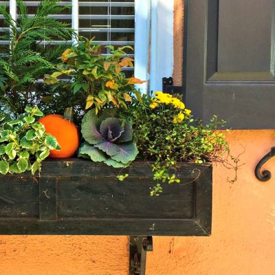 {Five Minute Friday} Pumpkin Planters